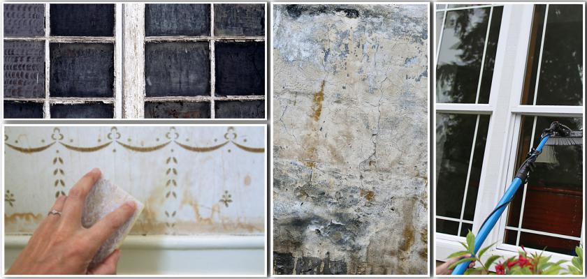 Cam ve Duvar kağıdı lekeleri