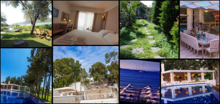 The Bodrum by Paramount Hotels &Resort Özellikleri
